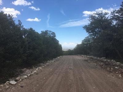 Bernalillo County Residential Lots & Land For Sale: 10 Vista Alta Drive