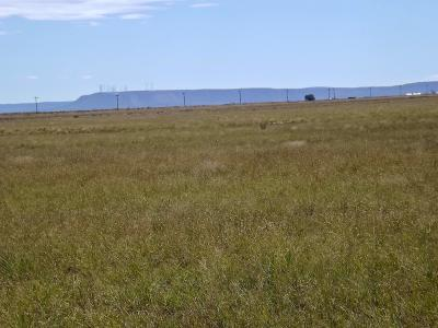 Torrance County Residential Lots & Land For Sale: 49 Corrie Drive