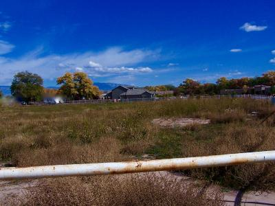 Bernalillo County Residential Lots & Land For Sale: 1431 Tierra Verde Place SW #L-B