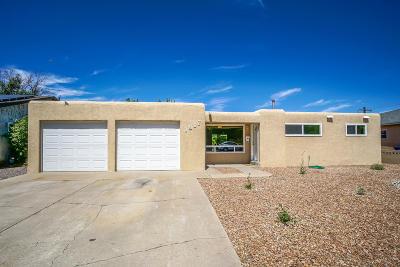 Albuquerque Single Family Home For Sale: 1817 June Street NE