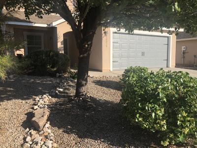 Albuquerque Single Family Home For Sale: 10539 Cadiz Street NW