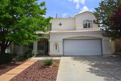 Albuquerque Single Family Home For Sale: 10827 Wolf Creek Road SE