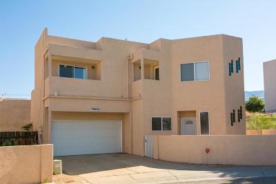 Albuquerque Single Family Home For Sale: 10449 Gutierrez Road