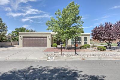 Albuquerque Single Family Home For Sale: 1033 Lawrence Drive NE