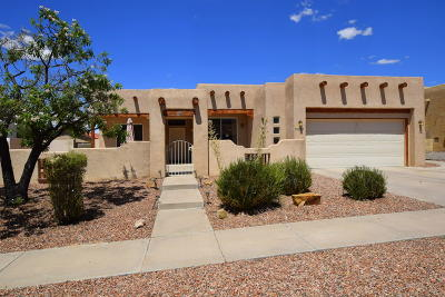 Albuquerque Single Family Home For Sale: 10529 Pisa Drive NW