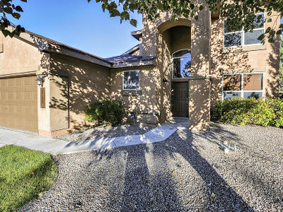 Albuquerque Single Family Home For Sale: 10428 Rayner Drive NW