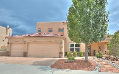Single Family Home For Sale: 8116 Via Encantada NE