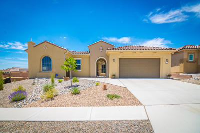 Albuquerque Single Family Home For Sale: 9228 Del Webb Lane NW