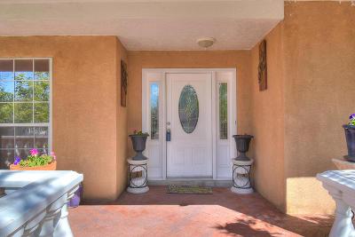 Albuquerque Single Family Home For Sale: 3200 Vista Grande Drive
