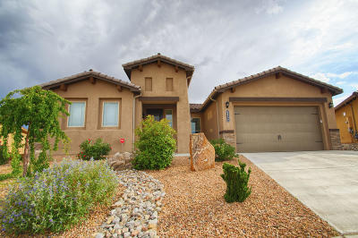 Albuquerque Single Family Home For Sale: 6452 Aloe Road NW