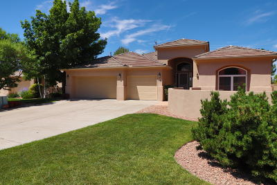 High Desert Single Family Home For Sale: 5905 Silver Leaf Trail NE