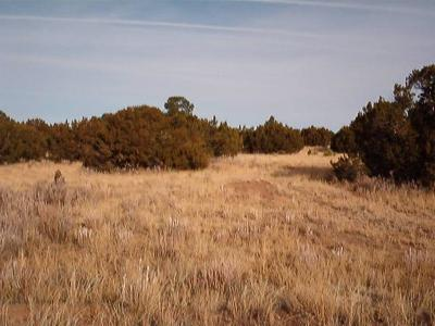 Edgewood Residential Lots & Land For Sale: 7 Cedar Tree Lane