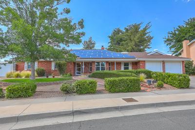 Albuquerque Single Family Home For Sale: 10501 San Marino Road NE