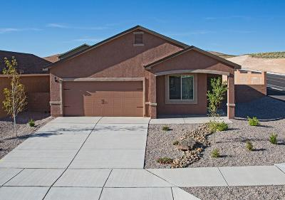 Rio Rancho Single Family Home For Sale: 3541 Wild Horse Road NE