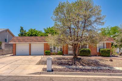 Albuquerque Single Family Home For Sale: 6900 Christy Avenue NE