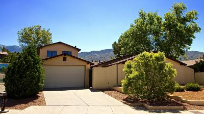 Albuquerque Single Family Home For Sale: 1404 Stutz Drive NE