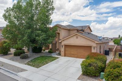 Albuquerque Single Family Home For Sale: 8151 Ventana Cielo Avenue NW