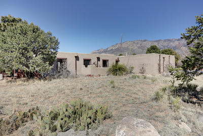 Albuquerque Single Family Home For Sale: 1455 Bluebell Drive NE