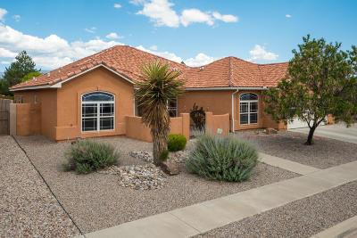 Albuquerque Single Family Home For Sale: 7004 Santa Rachel Street NE