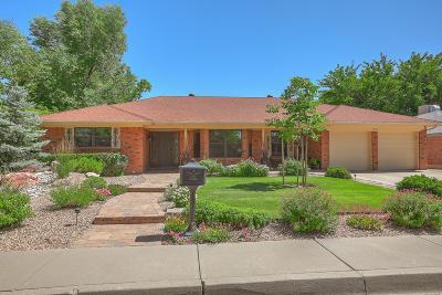 Albuquerque Single Family Home For Sale: 7012 Carriage Road NE
