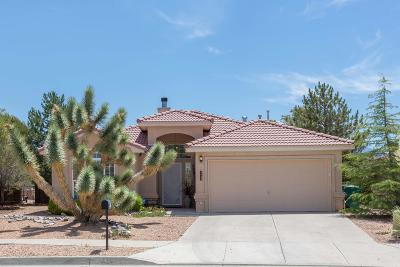 Rio Rancho Single Family Home For Sale: 4425 Snow Heights Circle SE