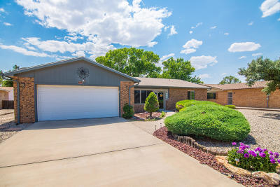 Valencia County Single Family Home For Sale: 807 Carmel Drive