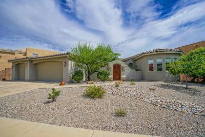 Albuquerque NM Single Family Home For Sale: $513,000