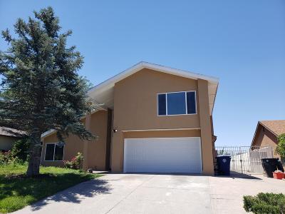Albuquerque Single Family Home For Sale: 7400 Vivian Drive NE