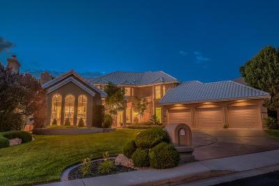 Albuquerque Single Family Home For Sale: 11611 Paganica Way NE