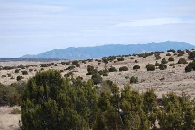 Socorro County Residential Lots & Land For Sale: 173 Campfire Road