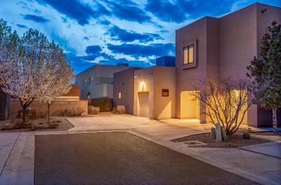 Albuquerque NM Single Family Home For Sale: $520,000