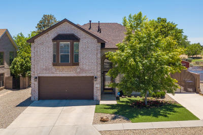 Albuquerque Single Family Home For Sale: 4824 Summerlin Road NW