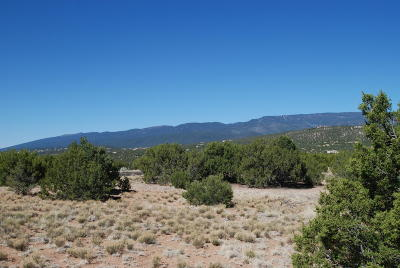 Residential Lots & Land For Sale: Lot 42 Anasazi Trail
