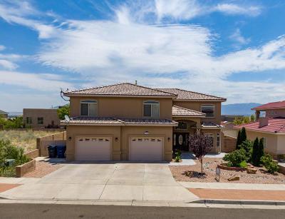 Albuquerque NM Single Family Home For Sale: $369,900