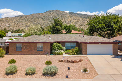 Albuquerque Single Family Home For Sale: 2916 Palo Alto Drive NE