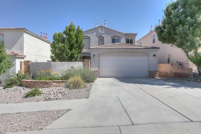 Albuquerque Single Family Home For Sale: 1948 Black Gold Road SE
