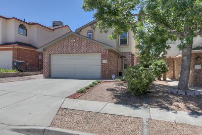 Albuquerque Single Family Home For Sale: 13108 Argon Avenue NE