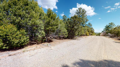 Residential Lots & Land For Sale: 9 Secret Pines Place