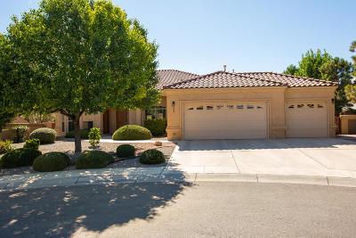 Albuquerque Single Family Home For Sale: 332 Cielito Lindo Place NW