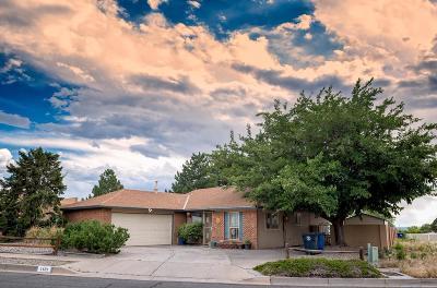 Albuquerque Single Family Home For Sale: 1101 Stutz Drive NE