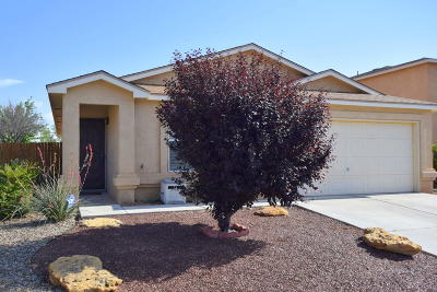 Albuquerque Single Family Home For Sale: 5331 Feather Rock Place NW