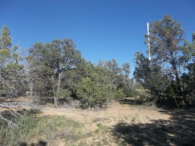 Cibola County Residential Lots & Land For Sale: 61 Normas Way Road