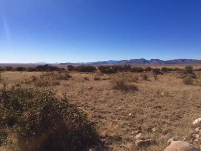 Socorro County Residential Lots & Land For Sale: 43 Sunset Vista Drive