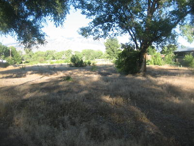 Corrales Residential Lots & Land For Sale: 7642 Corrales Road
