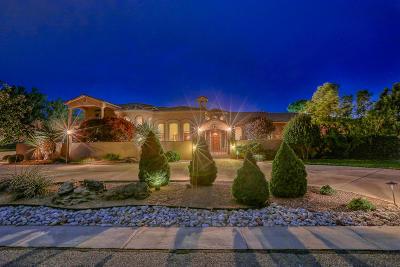 Albuquerque Single Family Home For Sale: 9415 Black Farm Lane NW