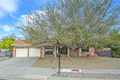 Albuquerque Single Family Home For Sale: 7125 Luella Anne Drive