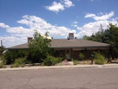 Socorro County Single Family Home For Sale: 122 Mustang Drive