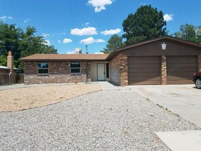 Single Family Home For Sale: 7213 Winans Drive NE