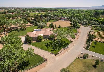 Sandoval County Single Family Home For Sale: 100 Camino De Los Arboles