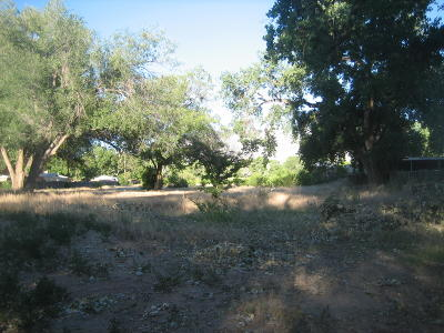 Corrales Residential Lots & Land For Sale: 7642, 7665 7646, 7648 Corrales Road
